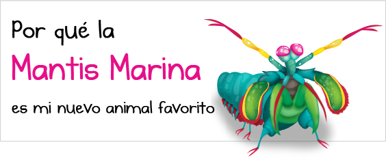 infografia oatmeal mantis marina